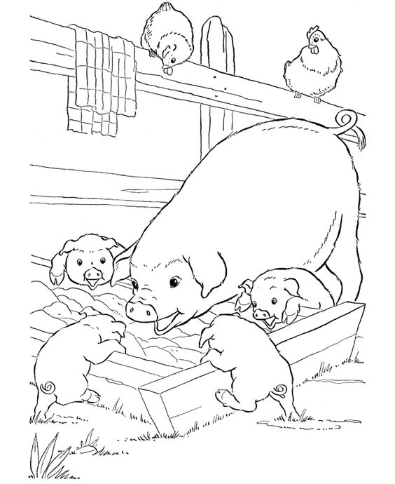 coloring pages farm 14 animals down on the farm free weekly plan pinterest farm pictures and colour book