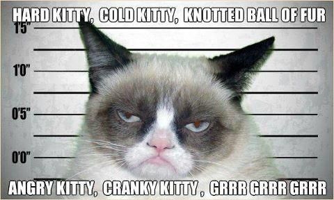 """...because some days, """"soft kitty"""" just doesn't cut it."""