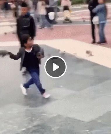 Guerra de pombo na rua quem vai encara