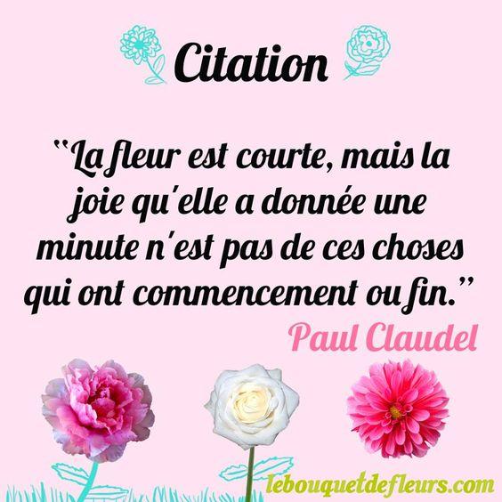 """Citation """"La fleur est courte, mais la joie qu'elle a donnée une minute n'est pas de ces choses qui ont commencement ou fin."""" Paul Claudel"""