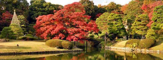 Les quartiers incontournables de Tokyo (3/4) - Ichiban Japan, documentaire Japon - Reportage Japon en vidéoIchiban Japan, documentaire Japon – Reportage Japon en vidéo