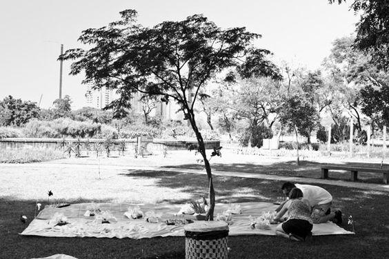 aniversario no parque