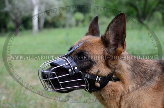 Super Light Weight #Wire #Muzzle for #German #Shepherd $29.99 | www.all-about-german-shepherd-dog-breed.com