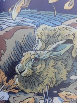 Langford Press produce a series of books on the Art of Natural History - one of our most popular is The Winter Hare beauty-and-the-book