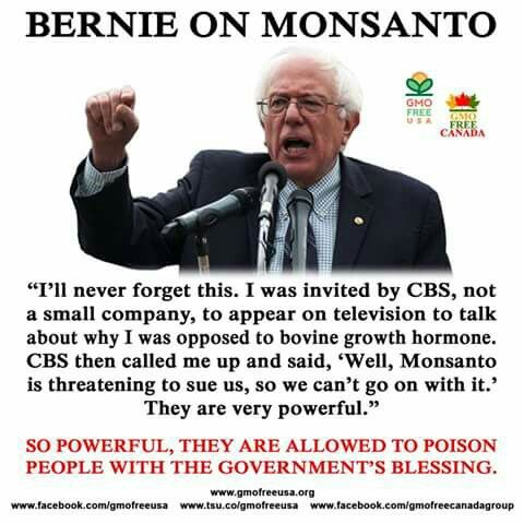 #BernieSanders FeelTheBern.org berniesanders.com Voteforbernie.org #FeeltheBERN #HillarySupportsMONSANTO