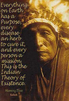 """Everything on Earth has a Purpose, every disease an herb to cure it, and every person a mission. This is the Indian Theory of Existence."" Morning Dove, Sioux:"