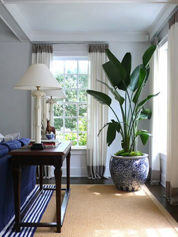 Large plant in patterned planter for corner of family room {Designer David Lawrence's home via Habitually Chic}: