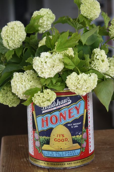 Love this from The Farm Chicks! I've never looked for Honey Tins but I'm going to now