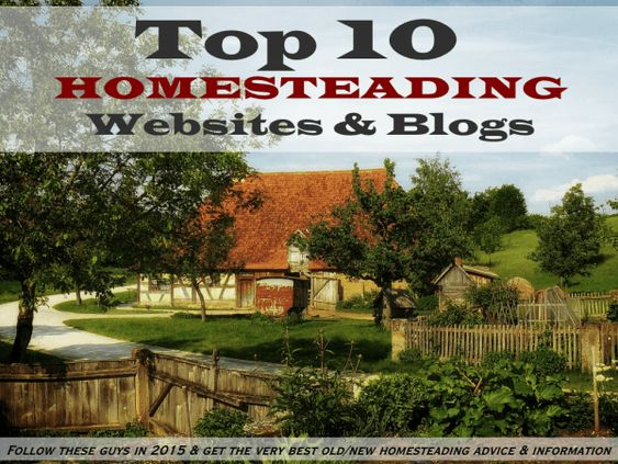 Here are our 10 favourite homesteading blogs and websites. If you are looking to boost your homesteading skills and knowledge, this is the place to start...