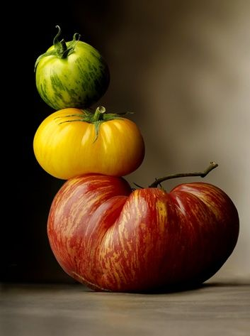 Inspirational The best Tomatensorten ideas on Pinterest Tomatenpflanzen Tomaten pflanzen and S en