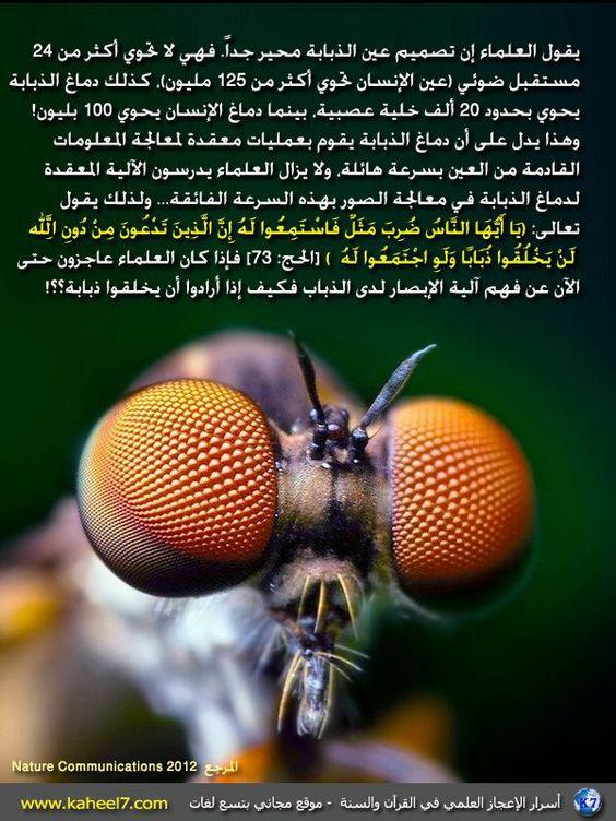 اسرار الاعجاز العلمي في القران والسنة Miracles Of Quran Islam And Science Quran