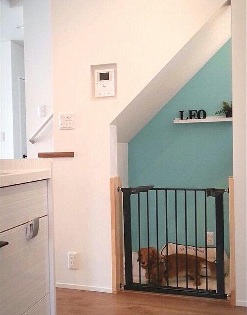 「リビング階段下 犬」の画像検索結果
