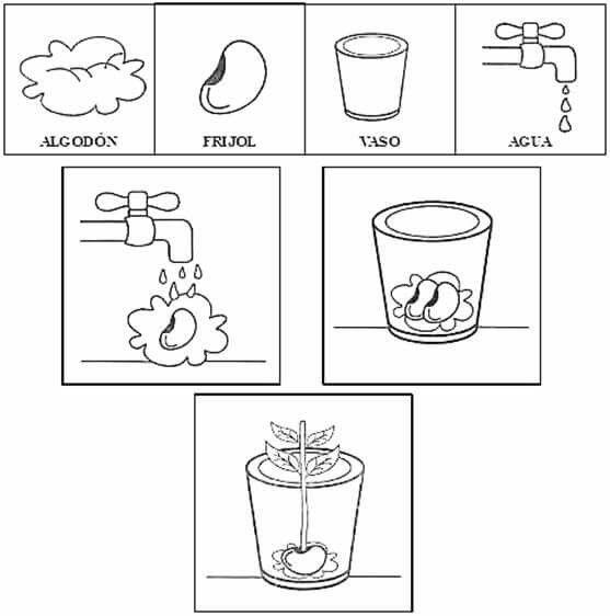 Eduquemoshoy Con Imagenes Actividades Para Preescolar 3