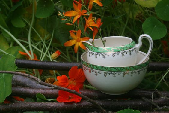 Alfred Meakin Sugar Bowl and Cream jug by gardenfullofVintage