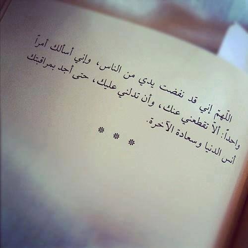 على الطنطاوى Some Quotes Words True Words
