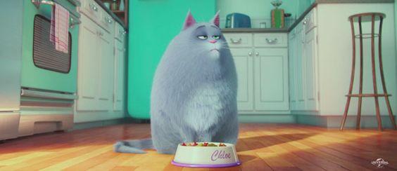Trailer do filme Pets – A vida secreta dos bichos, da Illumination Entertainment