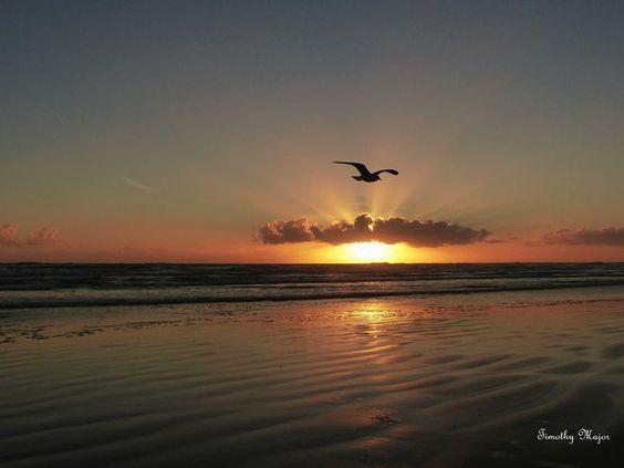 Good morning; NEW  Smyrna Beach, FLORIDA.