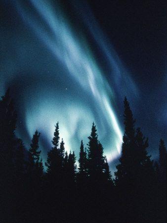 Northern Lights in Night Sky Canada: