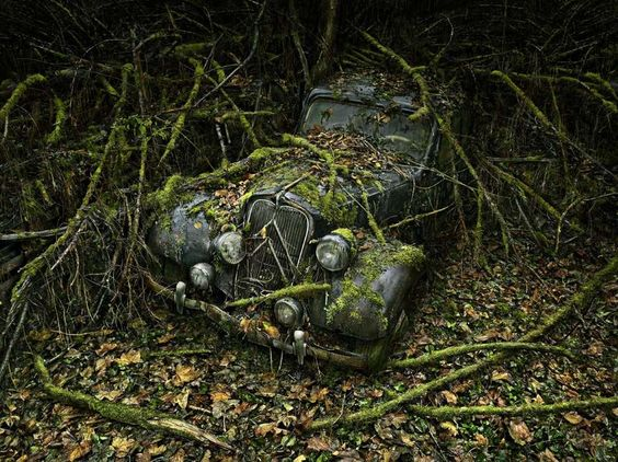 Hallowe'en is upon us, and this year we troll the fields and catacombs for the bones of the forgotte... - Peter Lippmann