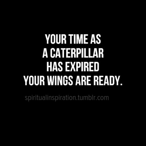 as we submit your college applications, this is how I feel about you ~ spread your wings and fly!!!: