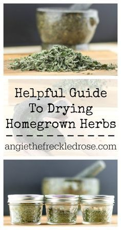 Helpful Guide To Drying Homegrown Herbs Angie The Freckled Rose Helpful Guide To Drying Homegrown Herbs Angie The Freck Herbs Types Of Herbs Edible Garden