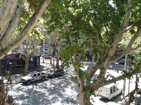 Calle céntrica Godoy Cruz