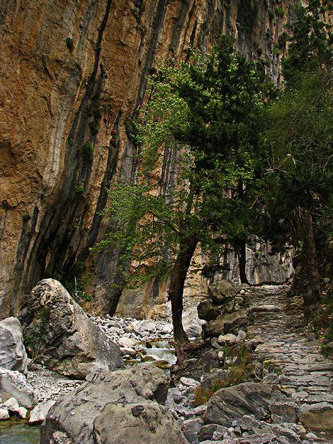Samaria Gorge, Crete by Bumpy Tours, via Flickr