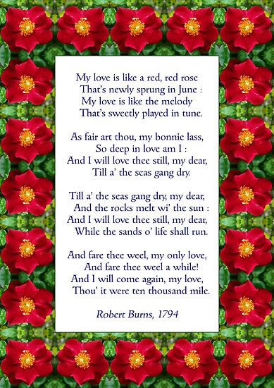 Robert Burns poem- he is like my great great great great great great grandfather! I don't know exactly how many greats but I am related to him somehow.