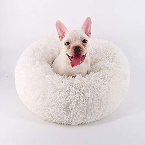Amazon Com Orchid Stone Concise Style Round Donut Pet Bed