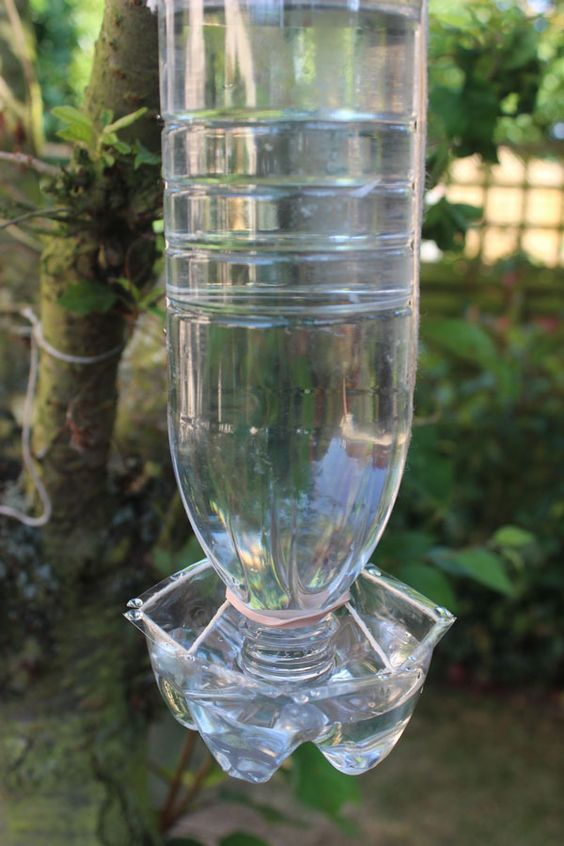 recycled bird feeder water bottle recycling crafts