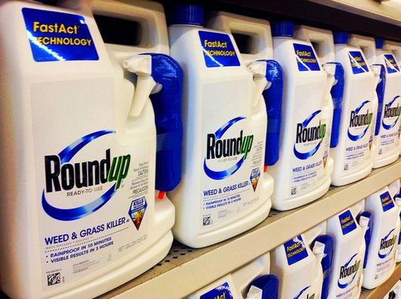 """""""Roundup: le scandale sanitaire du à l'Union Européenne et Monsanto !"""""""