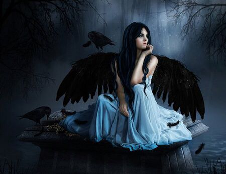 Dark raven and angel on pinterest - Dark gothic angel wallpaper ...