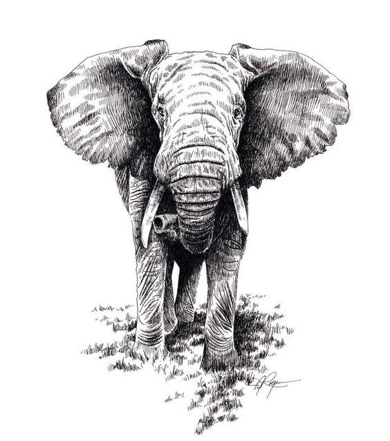 signiert von k nstler dj rogers afrikanischen elefanten. Black Bedroom Furniture Sets. Home Design Ideas