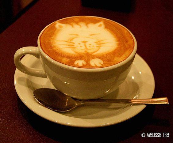 too cute to drink it: Fun Recipes, Kitty Cat, Coffee Kitty, Cat Cafe, Coffee Cats, Coffee Time, Coffee Art