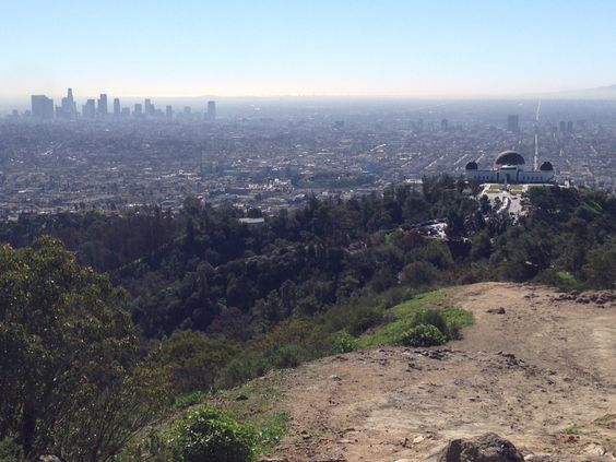 DTLA and the observatory