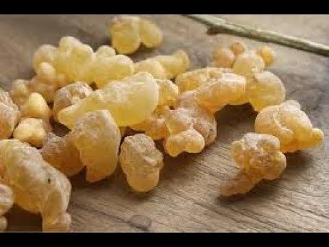 أحد كنوز الطب البديل اللبان الذكر يعالج العديد من الأمرض أولها مشاكل الكلى والعدي Frankincense Essential Oil Frankincense Resin Frankincense Essential Oil Uses