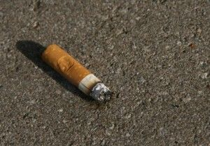 cigarette on the ground (humans caused this)
