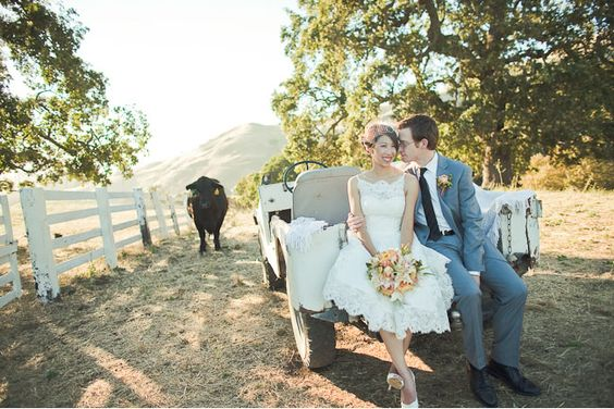 I hope to have a cow in one of my wedding pics