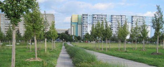 Berlin - Rudow-Altglienicke Nature Reserve - visitBerlinde EN - google zentrale irland
