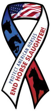 Reason to be against horse slaughter?