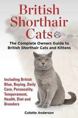 British Shorthair Cats The Complete Owners Guide To British