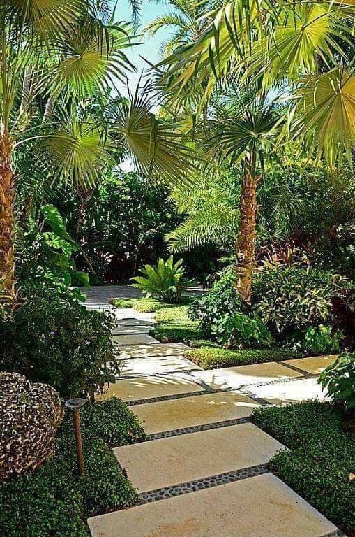 Jungle Theme Garden Designs Tropical Landscaping Tropical Landscape Design Tropical Garden Design