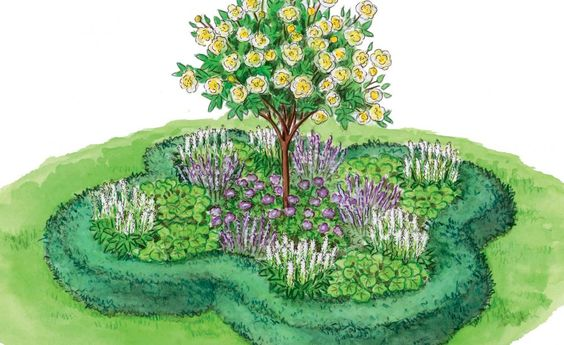 Unser kleines kleeblattförmiges Inselbeet findet in jedem Garten Platz