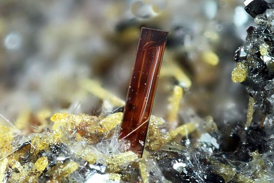 Pseudobrookite,  (Fe+++,Fe++)2(Ti,Fe++)O5 , Wannenköpfe, Ochtendung, Eifel, Rhineland-Palatinate, Germany. Size 1.02 mm. Copyright: Matteo Chinellato