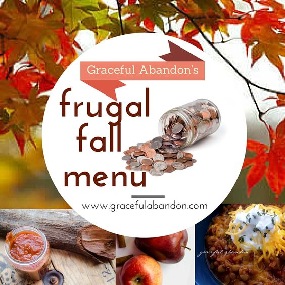 Here is a frugal menu plan that is THM compliant, suitable for large families, delicious, and healthy for both the body and the pocketbook. Bon Apetit!