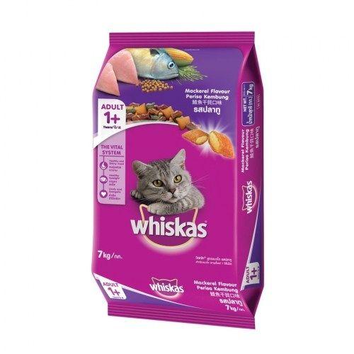 Related Post อาหารส น ขแบบเม ด สำหร บส น ขโตท กสายพ นธ อาย 1 ห องน ำ แมวขนาดใหญ ส ฟ า พร อมท ต กทราย เหมาะสำหร อาหารส น ขแ Dog Cat Coffee Bag Flavors