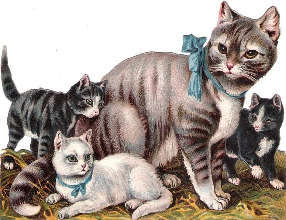Oblaten Glanzbild scrap die cut chromo Katzen  14cm Familie cat kitten family: