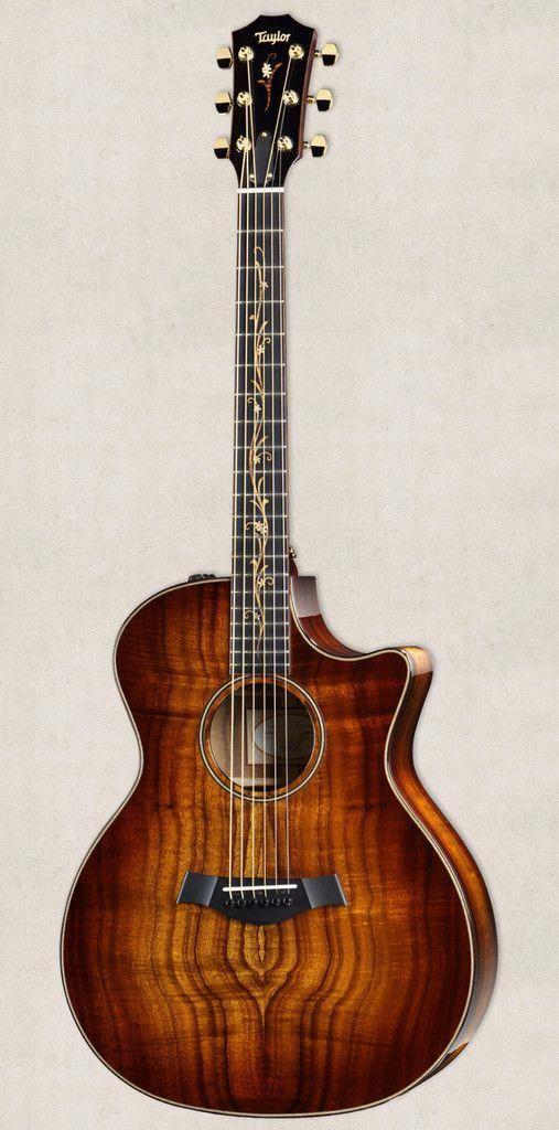 12 Great Electric Guitar Tuner Plug In Electric Guitar Ibanez Rg Guitarvideo Guitarphotography Electricguita Guitar Acoustic Guitar Acoustic Electric Guitar
