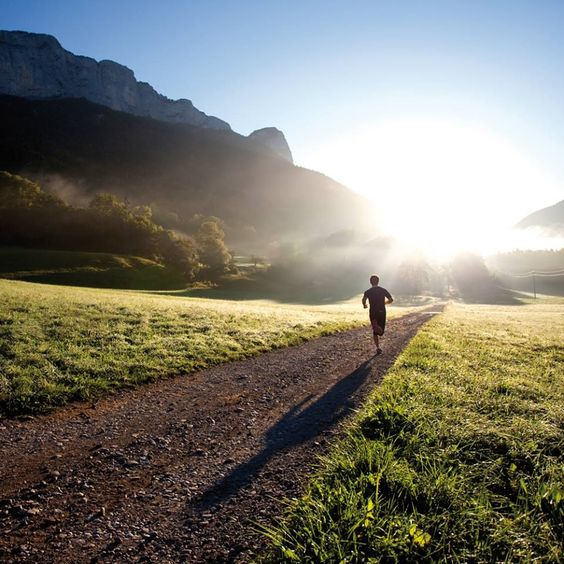 Morning run will make the body organs function to a higher level, and can improve the day's metabolic rate.