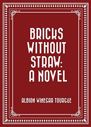 Bricks Without Straw: A Novel (English Edition)